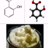 Salicylic acid and its positive effect in hydroponics