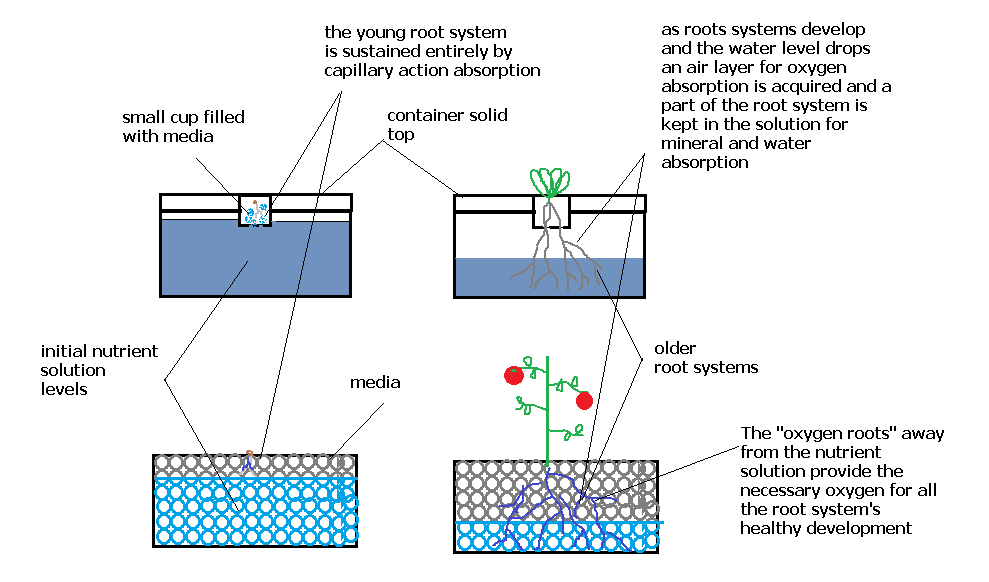 Completely Passive Non Recirculating Hydroponic Systems Yes Its